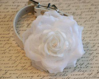 Blanco flores Collar de perro, mascota accesorio de la boda, blanco boda Ideas, White Collar Floral, accesorios del animal doméstico
