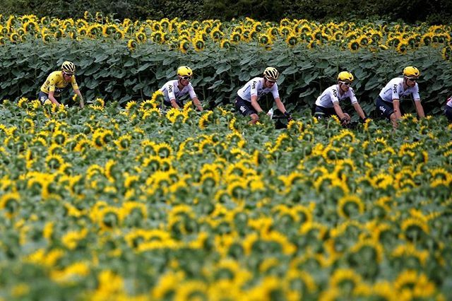 Cycling - The 104th Tour de France cycling race - The 178-km Stage 10 from Perigueux to Bergerac, France - July 11, 2017 - Team Sky rider Chris Froome of Britain, wearing the overall leader's yellow jersey, and other Team Sky riders during the race. REUTERS/Christian Hartmann #France #Sport