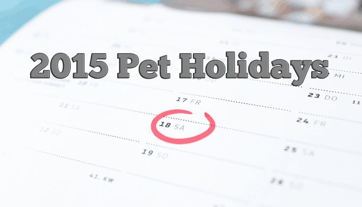 Calendar of pet holidays and awareness days, weeks and months centered around dogs and cats.  http://www.dogtipper.com/fun/pet-holidays
