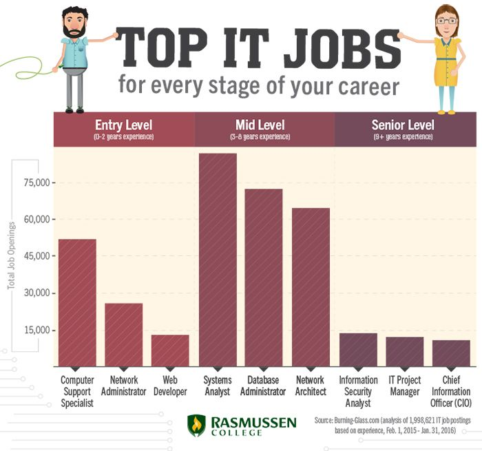 19 best cte careers images on pinterest infographic top it jobs for every stage of your career entry level mid level fandeluxe Images