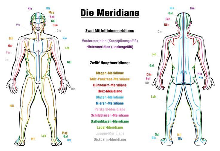 Meridian System Description Chart GERMANMeridian System Chart - GERMAN LABELING!- Male body with acupuncture meridians,…