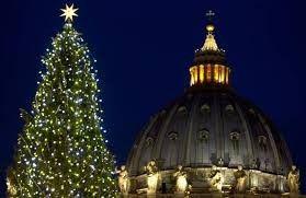 albero di Natale a Piazza San Pietro - Le Nuove Mamme Roma