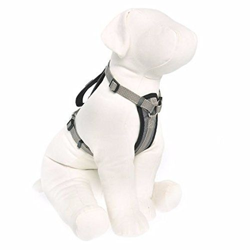 Kong Comfort Padded Harness Gray Small Learn More By Visiting