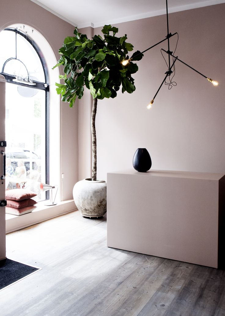 The 25 best mauve walls ideas on pinterest mauve for Mauve kitchen walls