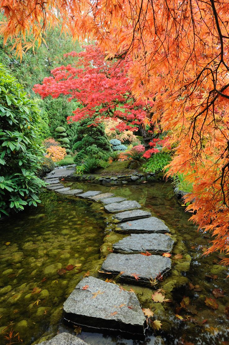 Autumn Foliage and stepping stones path across water