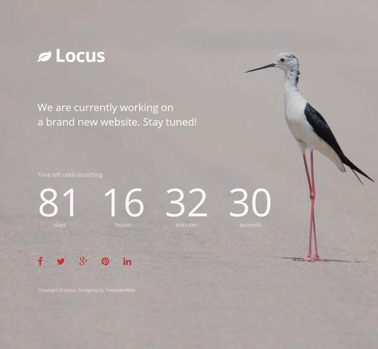 Locus - Simple Coming Soon Template