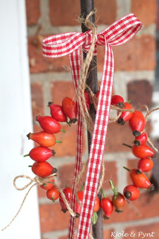 rose hip wreath- pretty! Can be dried and used year after year.