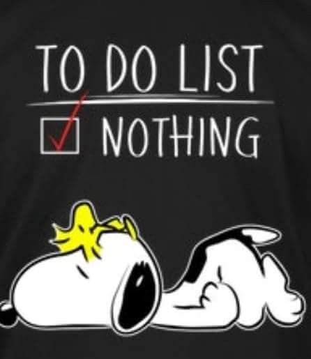 "A ""To Do List"" like this would be like vacation……"