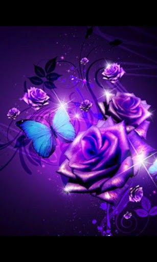 Purple Rose Wallpaper   Download Purple Roses Live Wallpaper 1 for Android - Appszoom