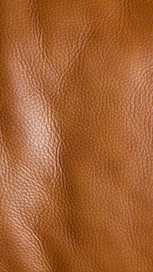 leather leather