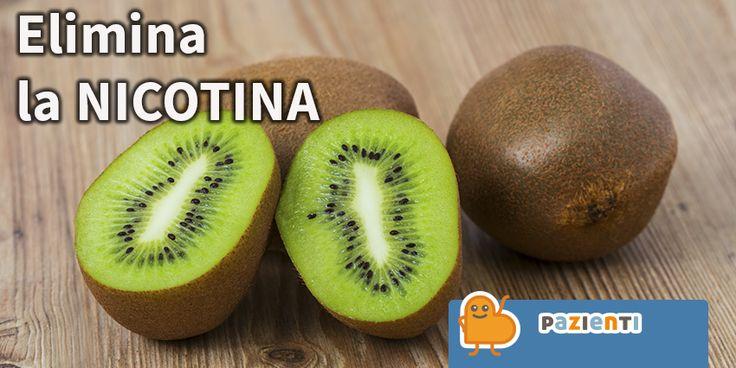 Il Kiwi è un frutto unico non solo per l'abbondanza di vitamine e nutrienti utili per la salute, ma anche perché una delle sue proprietà è in grado di eliminare la nicotina dal corpo, aiutandoci a smaltire questa sostanza tossica.