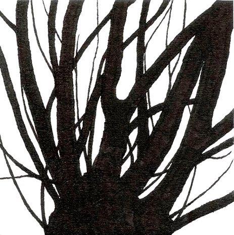 Gilles de Rooij - boomtakken 1