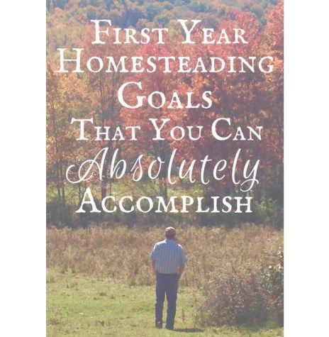 Starting a homestead can be a bit overwhelming! It may be a whole new way of life for you, or maybe homesteading is a familiar route, but you've decided to take it in a whole new direction. Regardless, you'll never reach those awesome goals that you have unless you start putting one foot in front of the other! It may be the road less traveled, but darn, it's going to be a beautiful journey! When we first bought our farm, my husband and I had alot of talks about our dreams for our farm, and…
