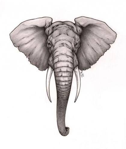 60+ Ideas Tattoo Elephant Face Mandala For 2019
