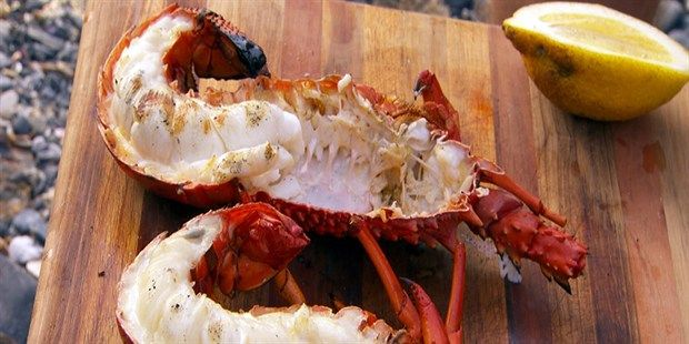 Grilled lobster with Tomalley mayonnaise