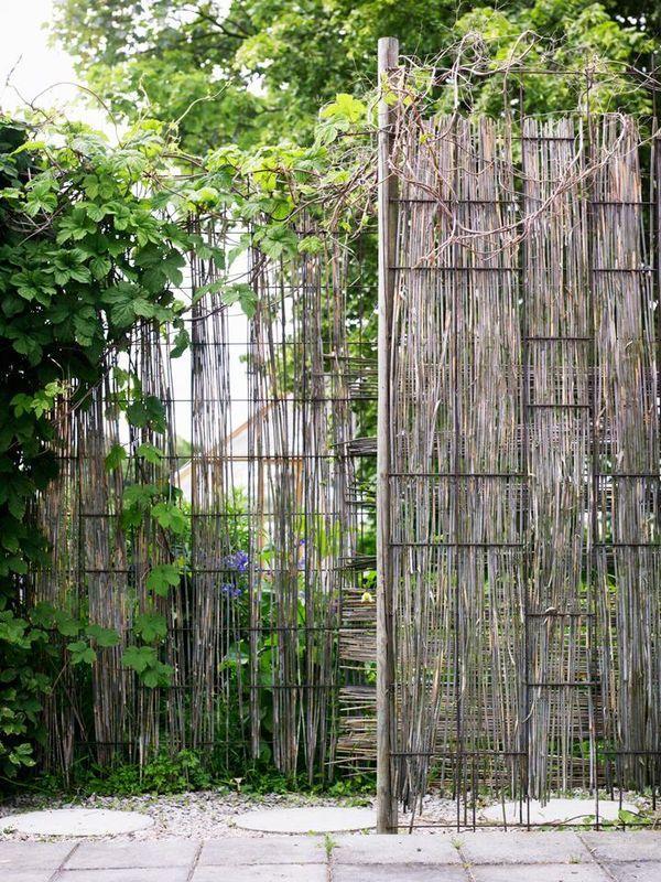 8. Armeringsnät och gräs | Armeringsnät är billigt och användbart i trädgården och går snabbt att sätta upp. De här näten är fastspikade med märlor och sedan har visset elefantgräs flätats in i rutorna. Väggarna på bilden markerar en ingång till trädgården och stänger av mot parkeringen utanför. Eftersom man kan variera höjden kan man tillfredsställa många önskemål i den gröna miljön oavsett om man är ute efter avskärmningar som är smala, breda, höga eller låga /
