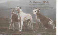 CP Chien - Lévrier, Scottish Deerhound, old card