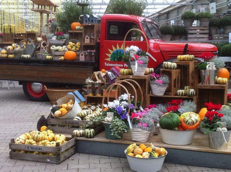 Gutschein im Wert von 50 Euro für das Gartencenter Peeters