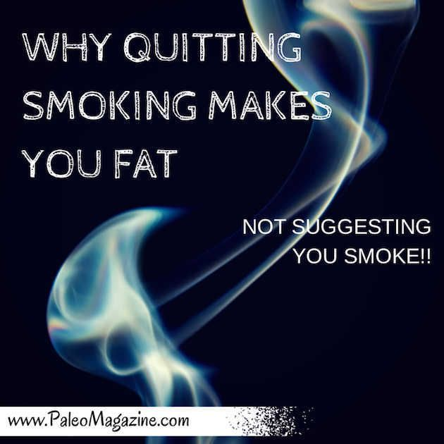 Why Quitting Smoking Makes You Fat http://paleomagazine.com/why-do-i-gain-weight-after-quitting-smoking #paleo #primal #diet
