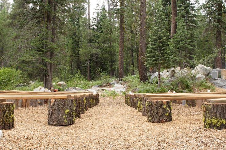 Logs and Wood Benches for Outdoor Wedding Ceremony Seating