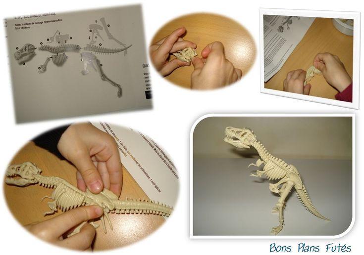 Construction squelette dinosaure Tyrannosaure Rex