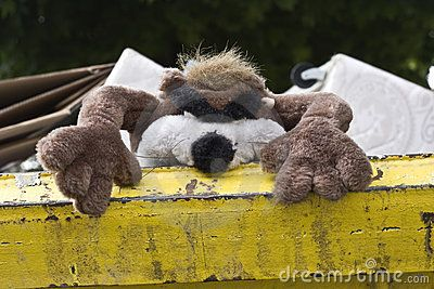 An unwanted furry toy thrown into a skip