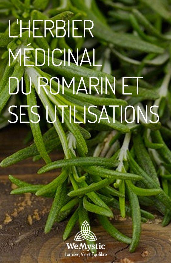 l 39 herbier m dicinal du romarin et ses utilisations nanan. Black Bedroom Furniture Sets. Home Design Ideas