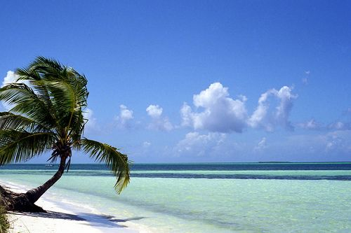Beach - Cayo Guillermo - Cuba by andrewcorbett, via Flickr