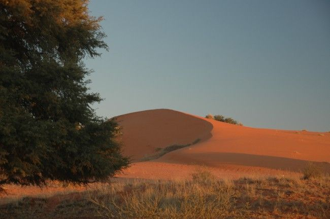The Nossob 4x4 Eco Trail - 4x4 Trip in the Northern Cape, South Africa