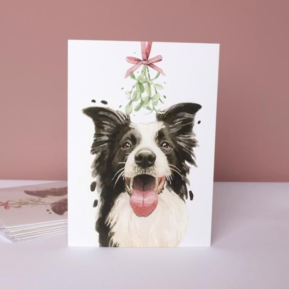 A Christmas Kiss 2020 Here's beautiful Sully the Border Collie asking for a Christmas
