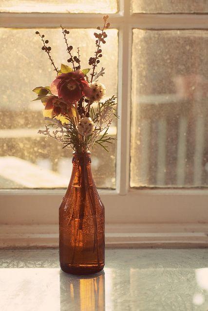 Hellebores  www.lovenfreshflowers.com