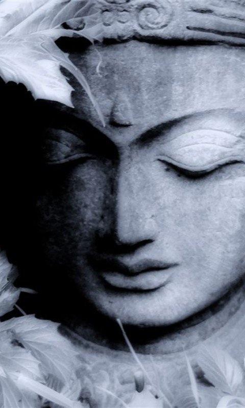 Dryden NY Buddhist Single Men