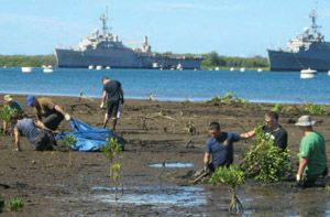Navy and Air Force volunteers spent the morning of July 20 removing invasive mangrove from a muddy low tide area of the Pearl Harbor National Wildlife Refuge at Middle Loch across from Inactive Ships Maintenance Office.