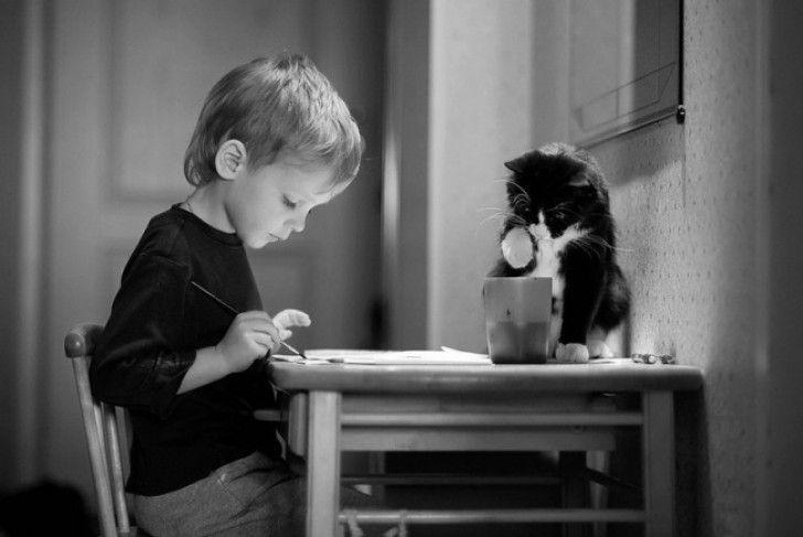 Deze 20 Prachtige Foto's Laten De Bijzondere Band Tussen Katten En Kinderen Zien...