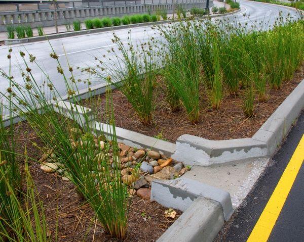 Les 182 meilleures images du tableau eau gestion ep rain for Jardin urbain green bar
