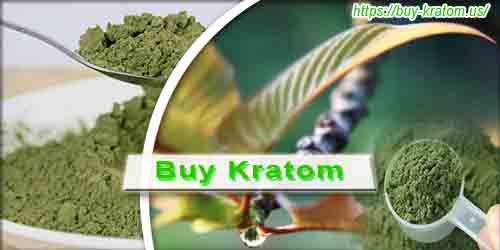 Buy Kratom Powdered Leaf! Guaranteed consistent quality - Buy Kratom