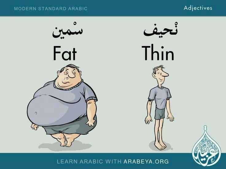 free dictionary english arabic sentences