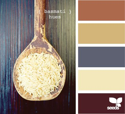 basmati hues, possible color scheme with the idea we stain the shelves, no paint um shelves.  What do you think?