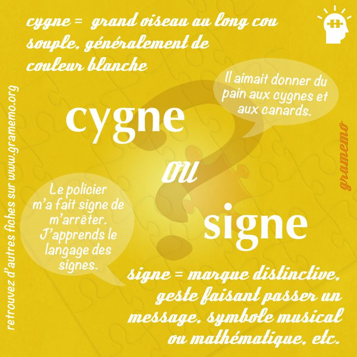 L03 Cygne signe