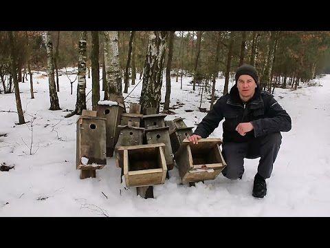 Budki lęgowe (ogólnie o zakładaniu) - YouTube