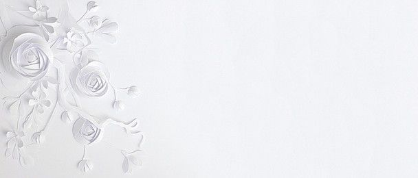 White Background Photos And Wallpaper For Free Download Paper Background Design Watercolor Flower Background White Background Wallpaper