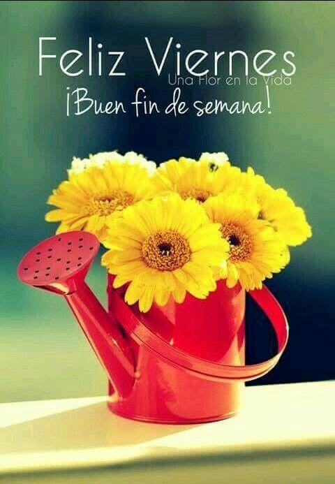 Días De La Semana Saludos Good Morning Quotes Good Morning Y