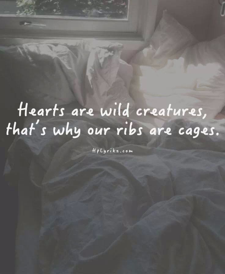 Hearts are wild creatures, that's why our ribs are cages…