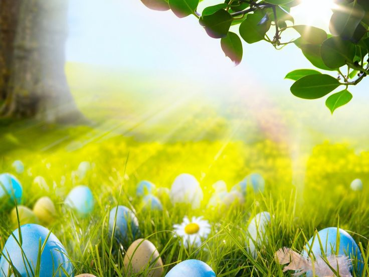 1000 Images About Easter Wallpaper On Pinterest: Best 25+ Easter Wallpaper Ideas On Pinterest