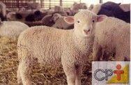 Produção de cordeiros: comportamento dos animais: Curso Cpt, Dica Curso, Dos Animais, Produção De, De Cordeiros, Dess Animais, Comportamento Dos, Animals Color Pink