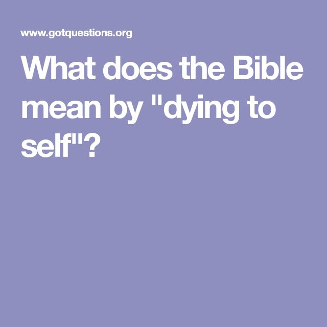 what does the bible mean to me After clicking 'register', you will receive an email with a link to verify your account and to complete your registration the completed registration allows us to send order and donation receipts to the email address you provided.