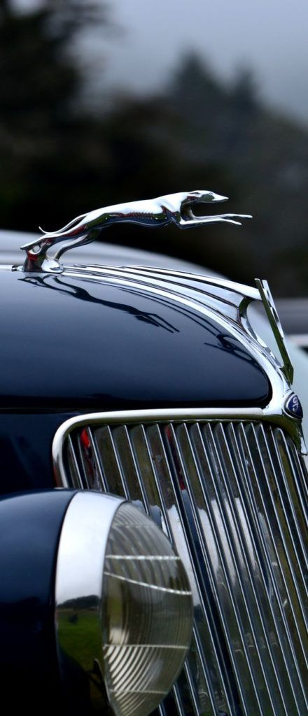 Emblems Cars Pinterest Cars Hood Ornaments And Car Show