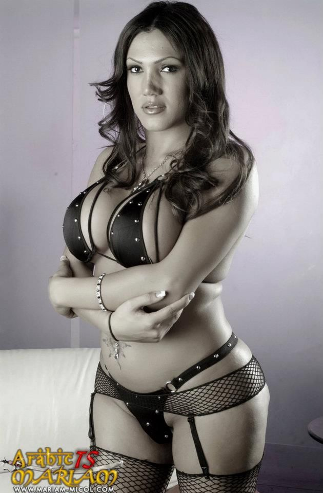 sofia escort girls ts escorts italy