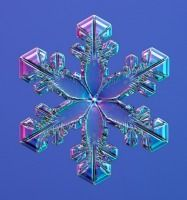 Nature's Real Snowflakes are the best.