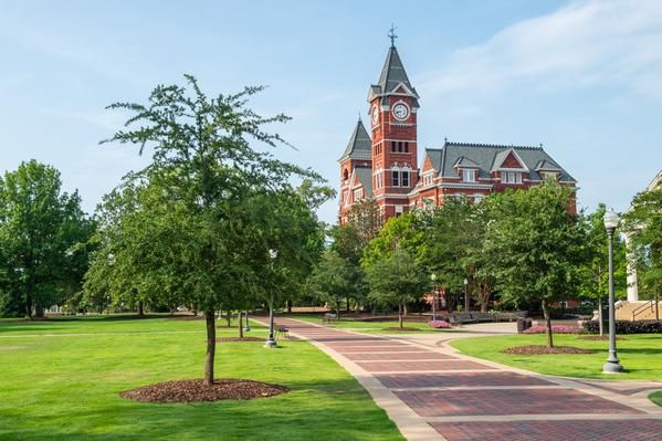 10 Easy Classes at Auburn University | College Tips | Auburn
